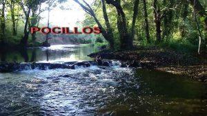 pocillos1