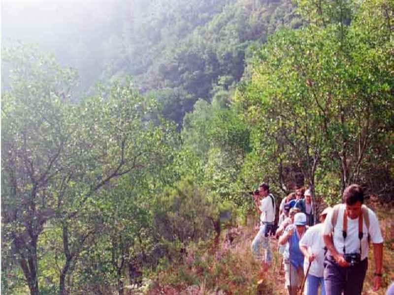 Rutas por la Naturaleza – Rutas de Senderismo